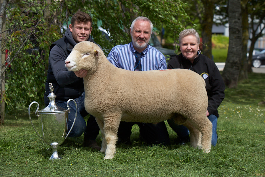 Sharon & Trevor Knox with Champion Male, Riverview Wasabi, W24 and purchaser, Joe Dufosee