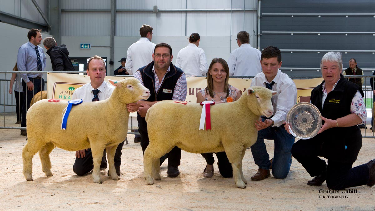 From left William Carson with the Reserve Female Champion from Graham Cubitt's Kildowney Flock, the sponsor from J G Animal Health, Judge, Sian Downes, T J Magee with the Female Champion (Supreme Champion) from Graham Cubitt's Kildowney Flock and Brenda Wear presenting the Redhill Perpetual Award for the Best Female Exhibit