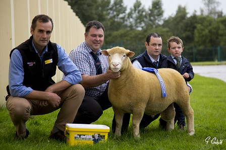 Mark Crawford (Sponsor, Farmcare Products) with Thomas Wright, & Judge, Seamus Mullan with the Reserve Champion