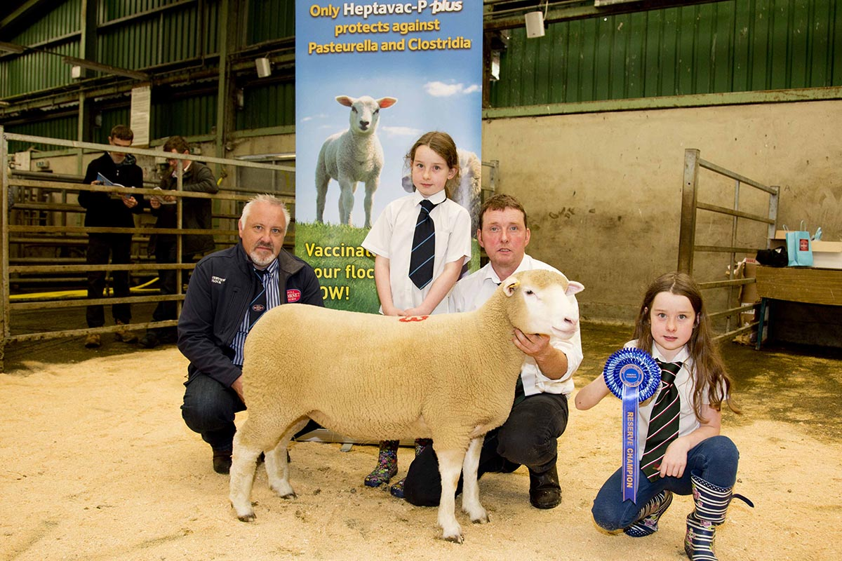Richard Currie, with daughters, Molly & Katie, and the Reserve Champion, and Judge, Trevor Knox.