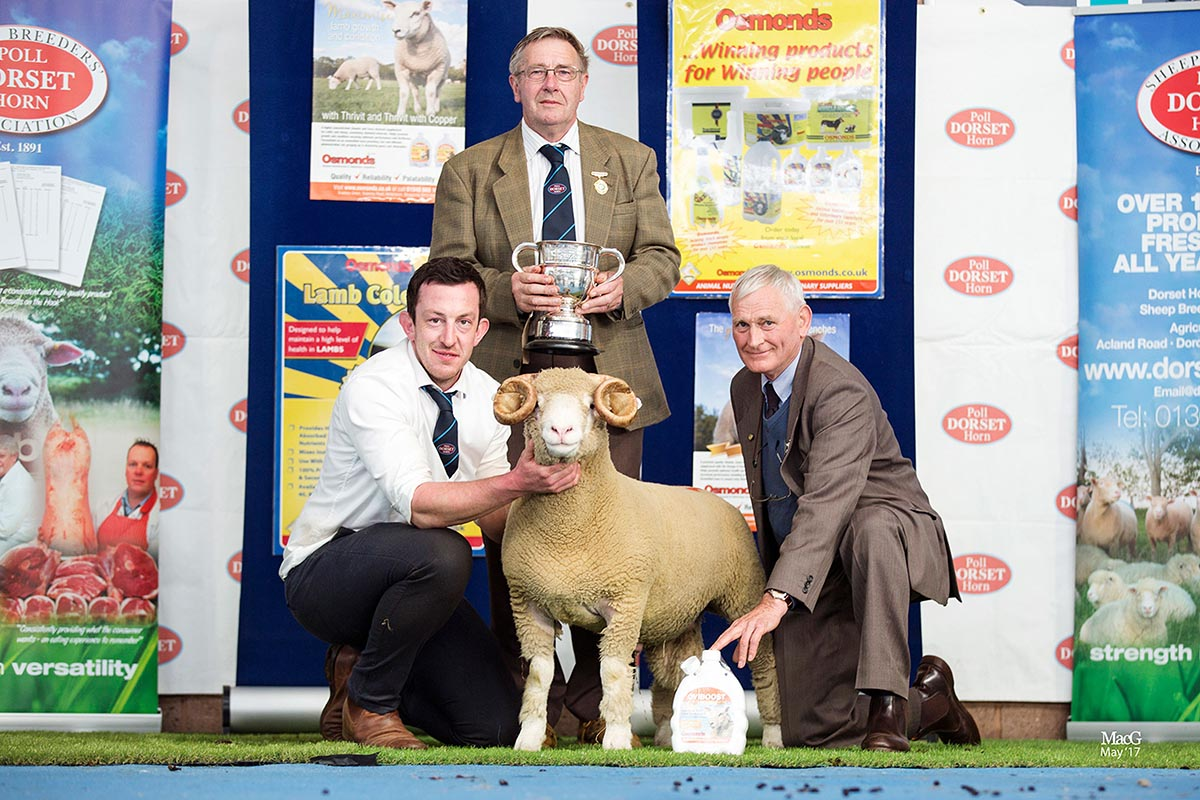 Best Single Horn Ram Lamb, sponsored by Mr Simon Dunk, Osmonds, Ben Lamb's Richhill Zig Zag, Z861 with from left Ben Lamb, Edwin Pocock, President and Simon Dunk, Osmonds