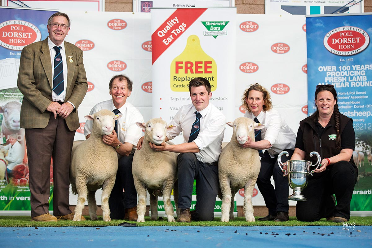 Best Group of Three Rams, sponsored by Shearwell Data Ltd., D W Rossiter's Huish Zaki, Z11464, Zan, Z11400, Zoro, Z11364, with from left Edwin Pocock, President, David Rossiter, Rich Rossiter, Ruth Jones and Helen Davies, Shearwell Data