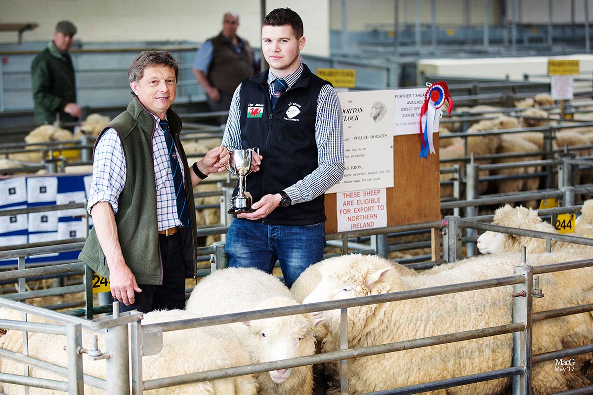 Fooks Bros. Champion Pen of Ewe Hoggets with left, Francis Fooks & right Llyr James
