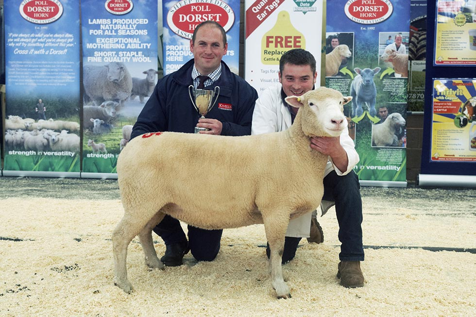 Reserve Champion Female - Tom Clarke with Manor Croft Ultima, U602 and Mark Davis, Kivells