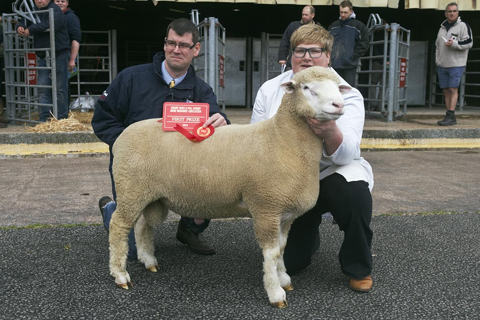 Karen Carson with Downkillybegs Wonderboy, W97 and Sam Boon from EBLEX