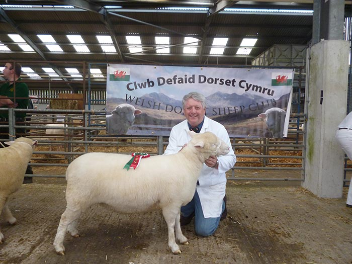 Reserve Breed Champion with Rowland Davies