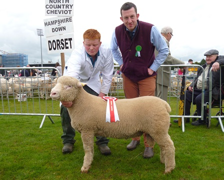 Shane Wilson with the Reserve Champion and Judge, Ben Lamb