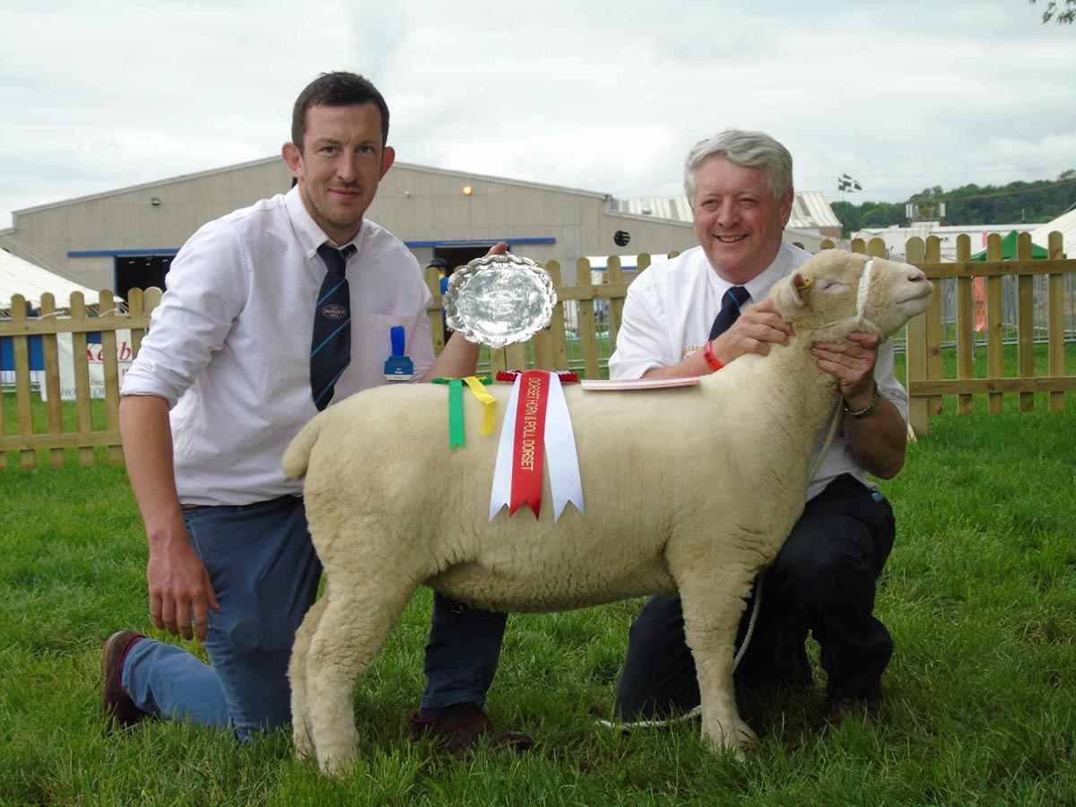 Ben Lamb, Judge, (left) and Rowland Davies with the Reserve Champion