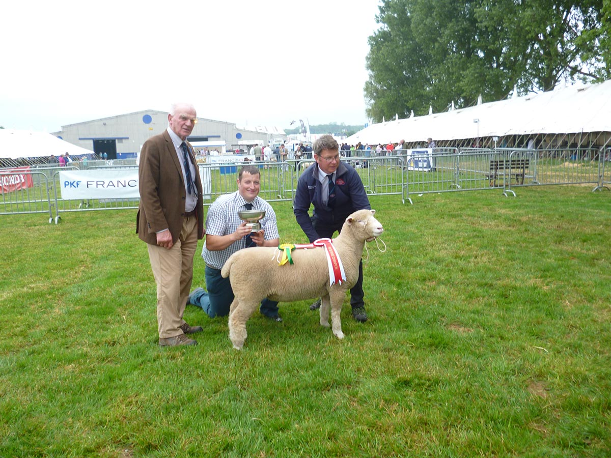 From left Richard Hole, Adam Care, judge, and Rob Hole with the Reserve Champion