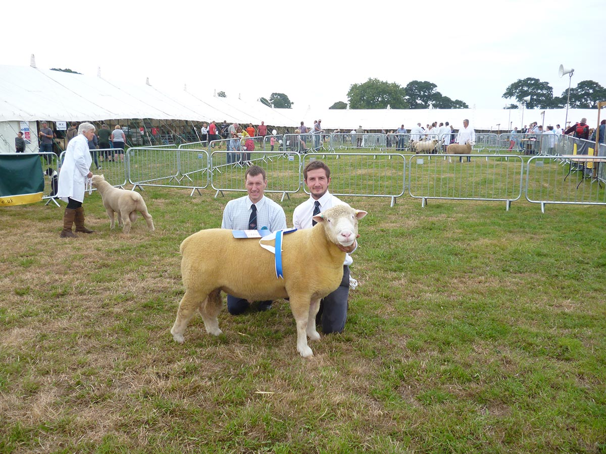 From left Matthew Care, Judge, & Harry Brooks with the Reserve Champion