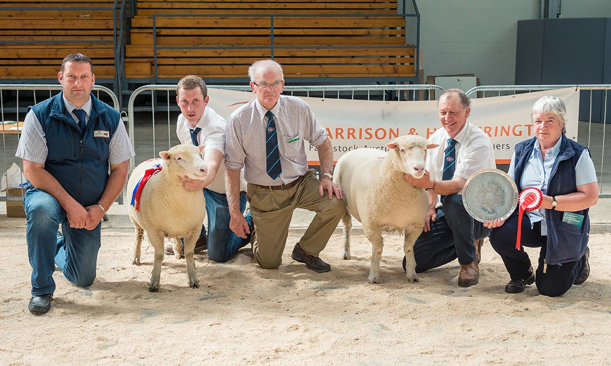 From left to right – Robert Garth, J G Animal Health, Joe Larder with the Reserve Champion Female, Richard Hole, Judge, David Rossiter with the Overall & Champion Female & Brenda Wear.