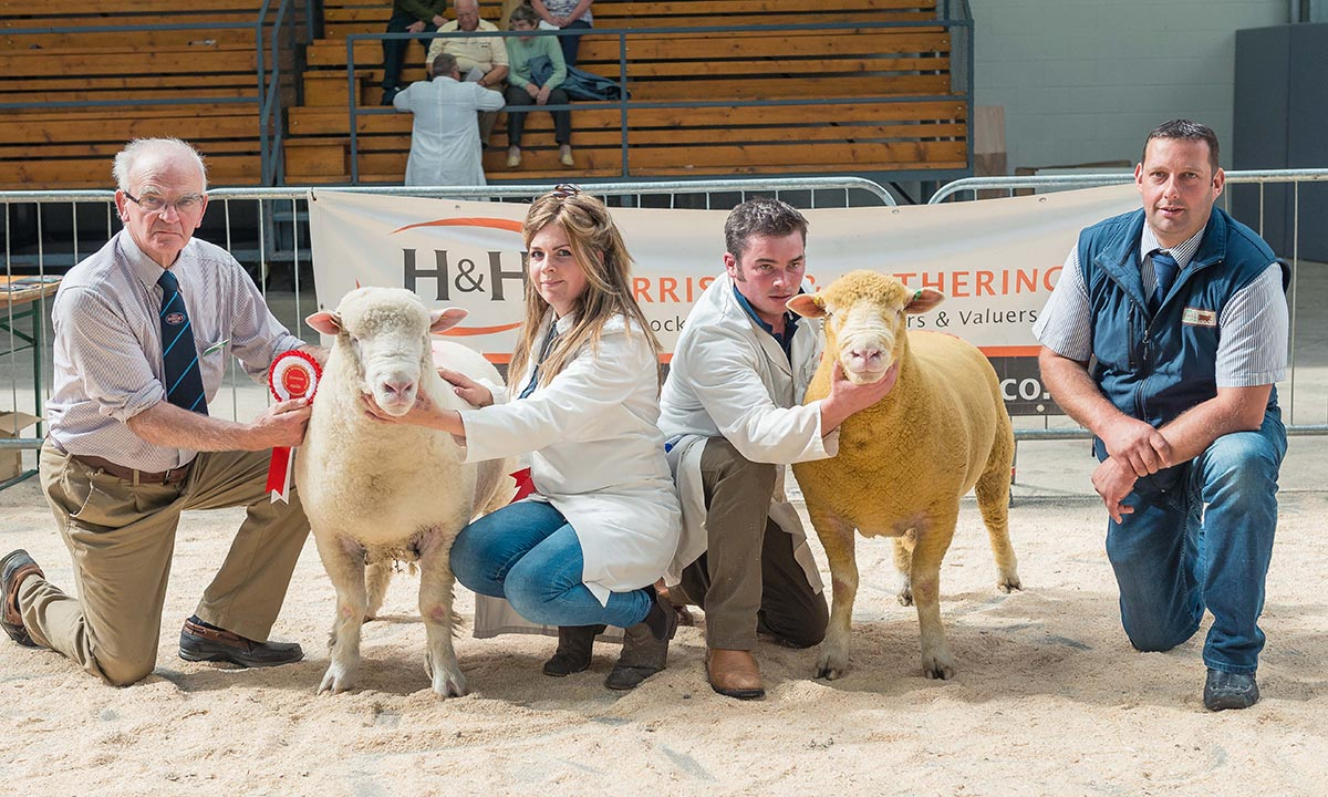 From left to right - Richard Hole, Judge, Christina Johnson with the Champion Male, Tom Clarke with the Reserve Champion Male & Robert Garth, J G Animal Health