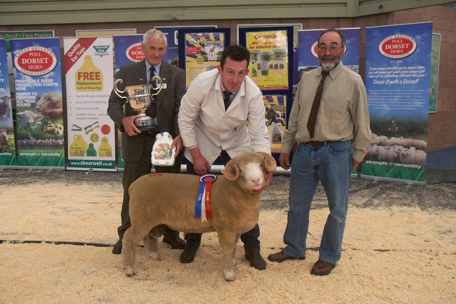 May Fair 2013 - Reserve Champion Male Exhibit