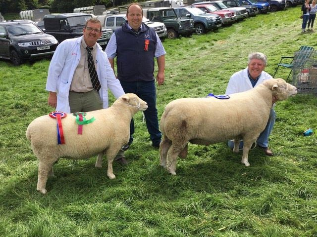 Geraint Jones with the Champion (left), Derfel Harris, & Rowland Davies with the Reserve Champion (right)