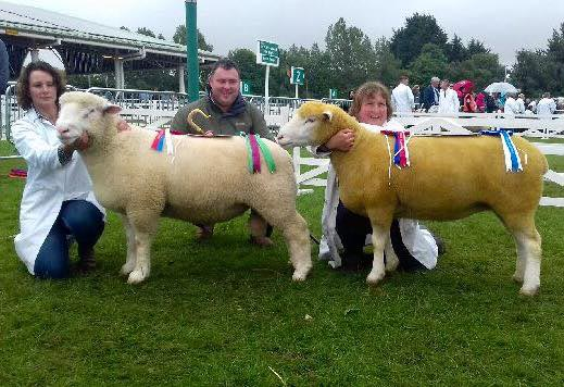 Karen Hodsgon (left) with the Champion, Thomas Wright, judge, and Helen Driver with the Reserve Champion